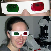 stereo/anaglyph glasses