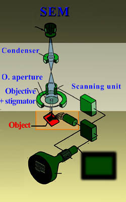 Lenses and diaphrams in a FESEM