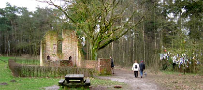 De 'Koortsboom' bij de St Walrickkapel bij Overasselt